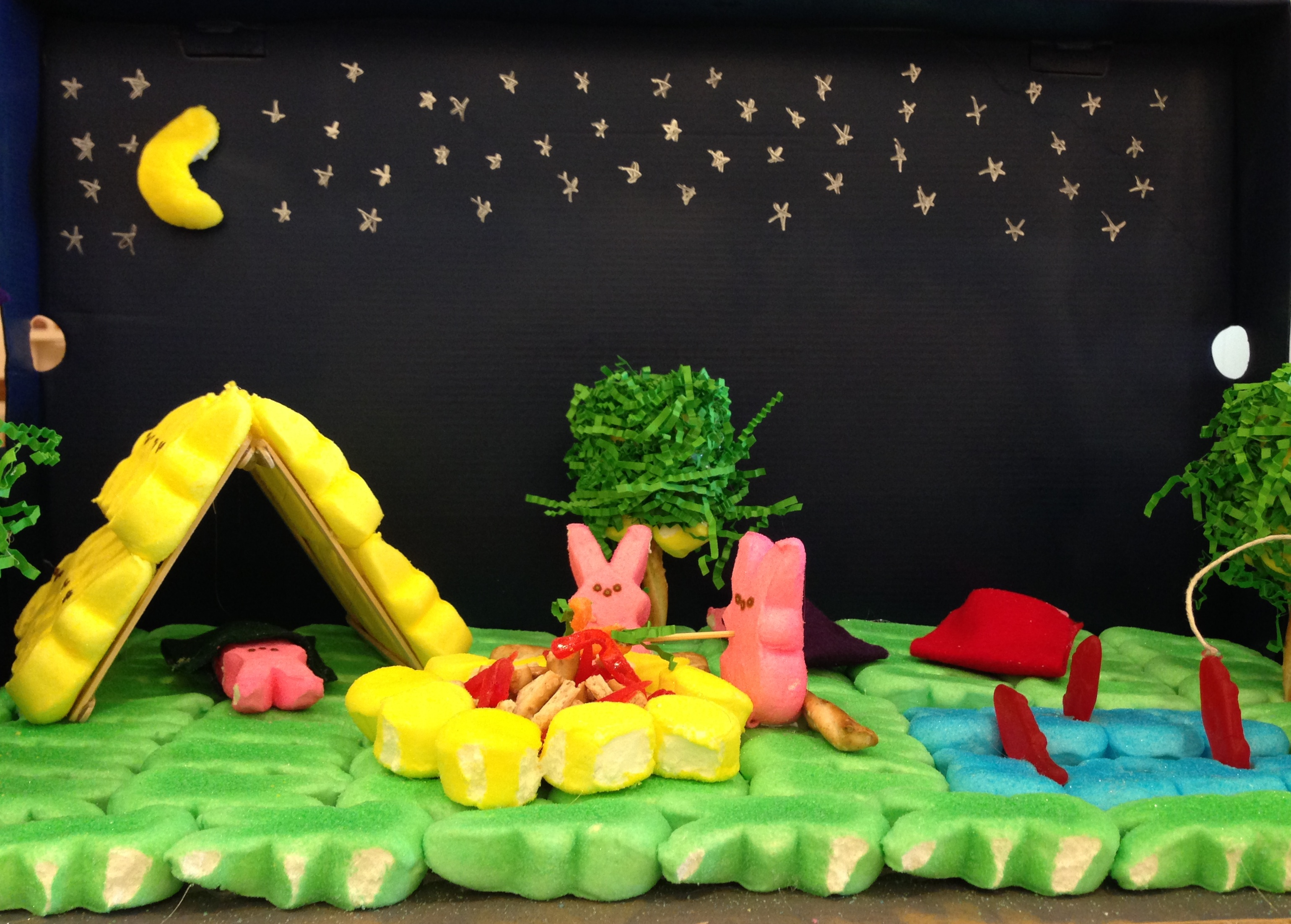 Library Arts Center 2014  Peeps Diorama Contest - 9  Peeps Camping