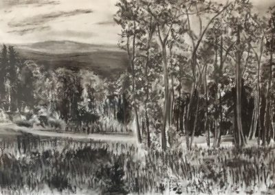 David Cote - Autumn Vista - Charcoal