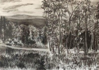 David Cote - Autumn Vista - Charcoal