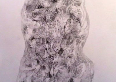 Rick Hearn - Two Potato - Graphite Drawing