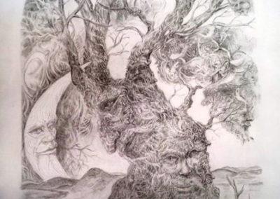 Rick Hearn - Gnarled Tree - Graphite Drawing