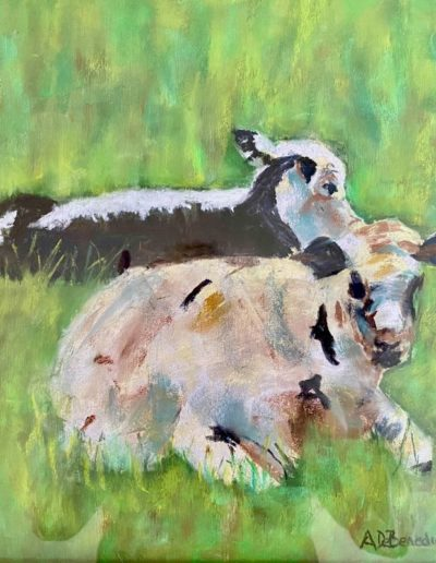 "Anne DeBenedictis ""Cows at Rest"""