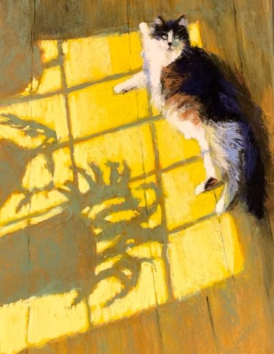 "Dave Kaphammer ""Max in the Sun"""