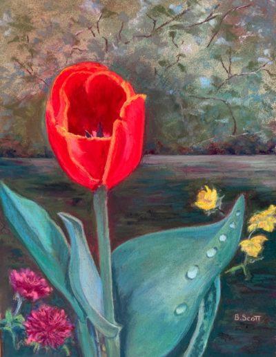 "Barbara Scott ""Die Rote Tulpen (The Red Tulip)"""