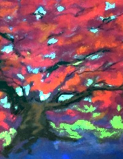 Paula Dorr - Fire Maple - pastel - $390