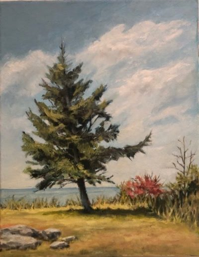 Gwen Fuller - Wind Driven Pine - Oil - $450