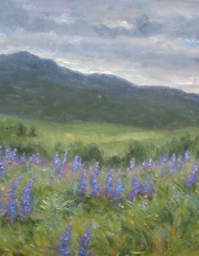 Mary Iselin - Cloudy Day Dancing, Lupines under Monadnock - Oil - $1,800