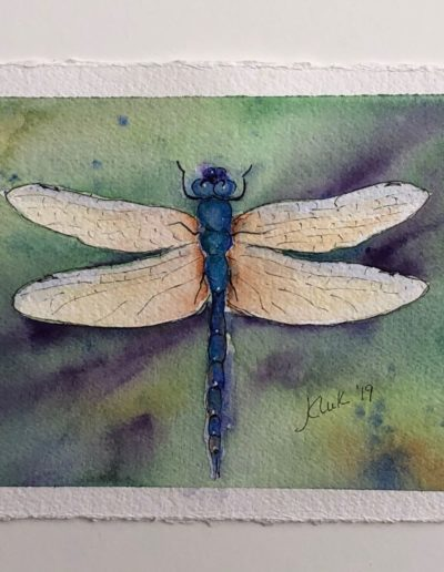 Jean Kluk - Dragonfly Fantasy - Watercolor - $95