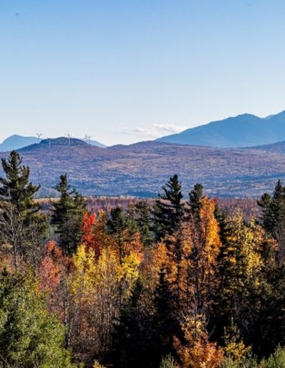 Thomas McHugh - North Country Autumn - Photograph - $250