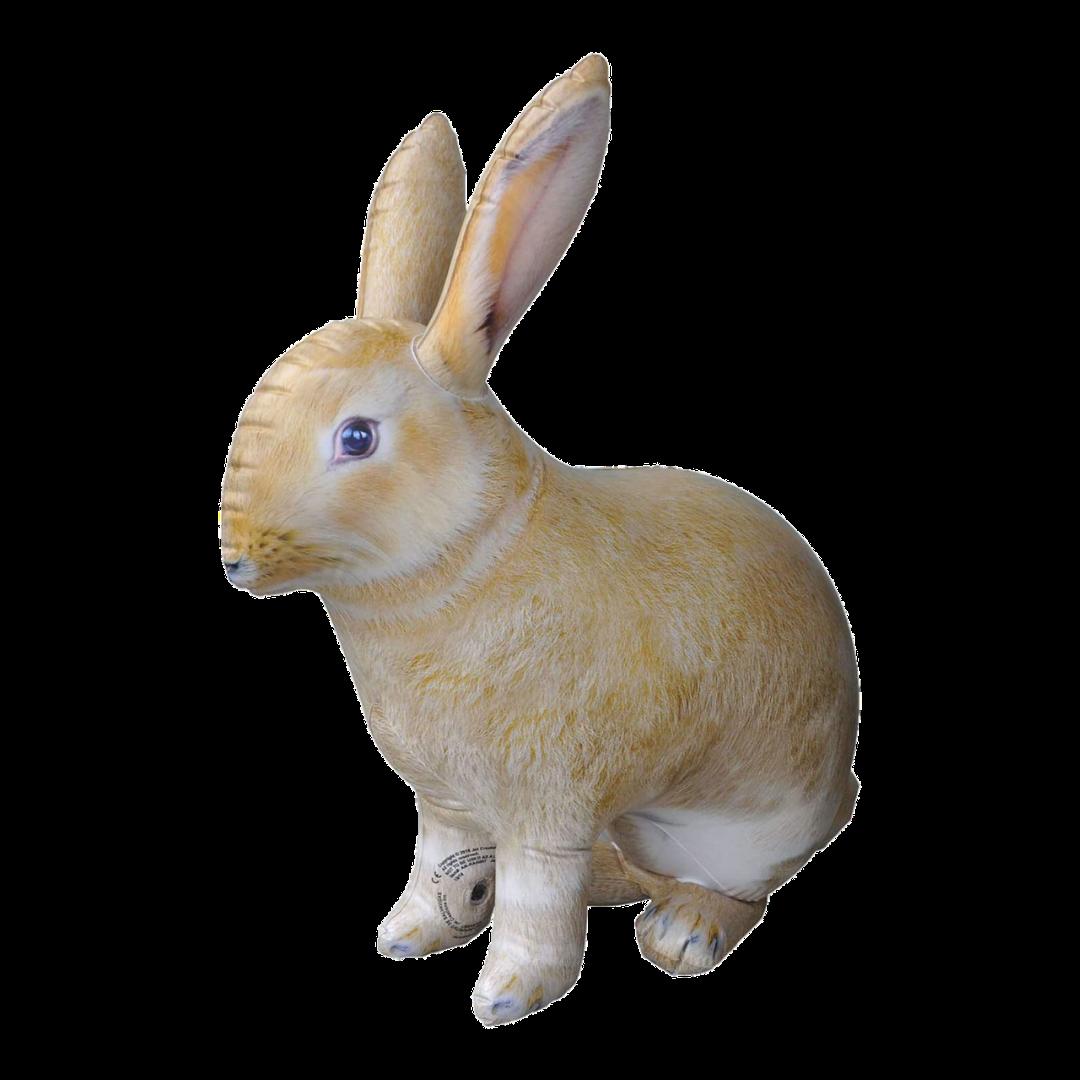 Rabbit Scavenger Hunt