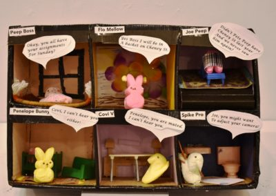 The Schissel Family - Peeps Zoom - Family Category